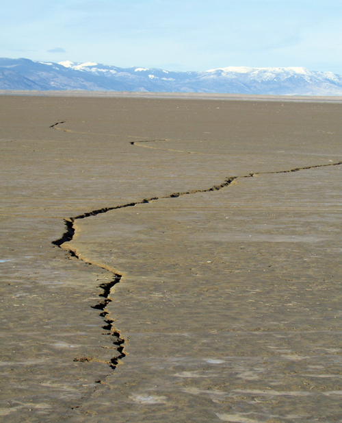 Alkali-Lake-cracks.jpg